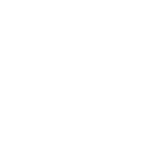 Onoging boost in revenue