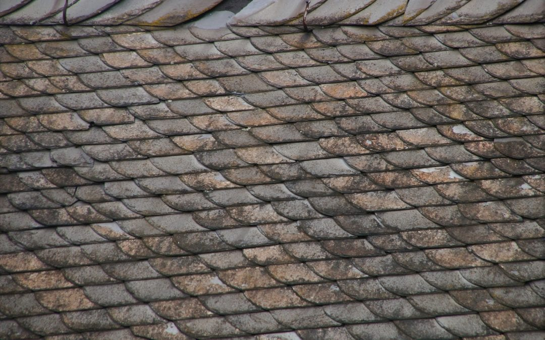 Five Reasons Why You Might Need Roof Leak Repair