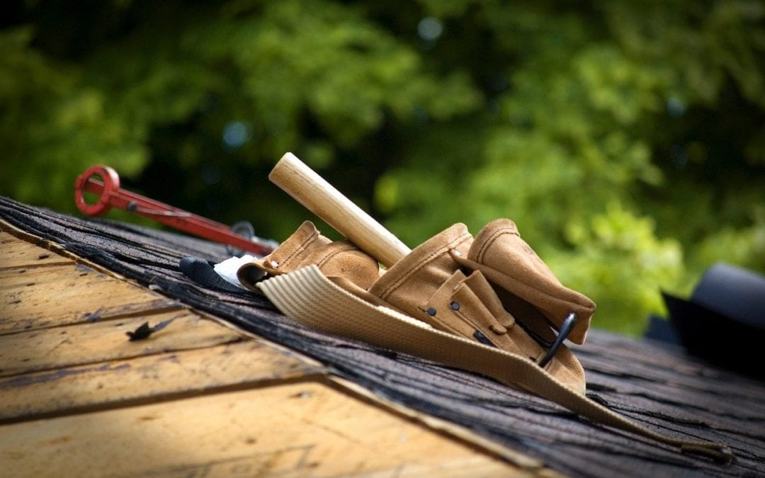 Professional Vs DIY Roof Replacement: Which Is the Best Choice?