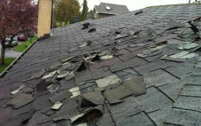Things to Know While Buying a House That Needs New Roof